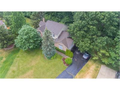 Northville Single Family Home For Sale: 47069 Elmsmere Drive
