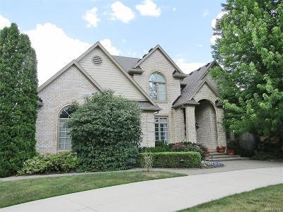 Rochester Hills Single Family Home For Sale: 3894 Teakwood Lane