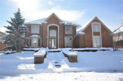 Northville Twp Single Family Home For Sale: 48709 Stoneridge Drive