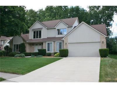 Novi Single Family Home For Sale: 45578 Emerald Forest