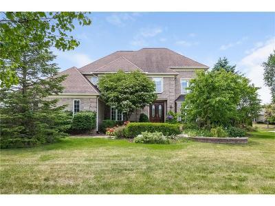 Canton Single Family Home For Sale: 7315 Heron Way