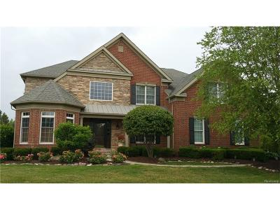 Novi Single Family Home For Sale: 50385 Drakes Bay Drive