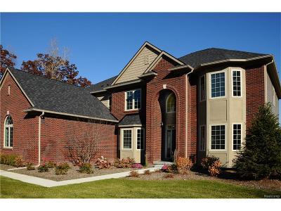 Troy Single Family Home For Sale: 5959 Ashwood