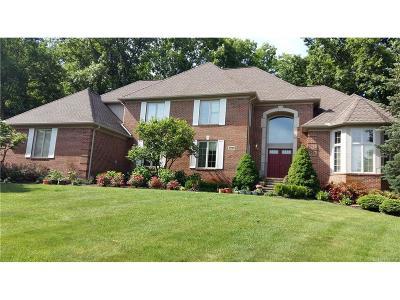 Novi Single Family Home For Sale: 47729 Edinborough Lane