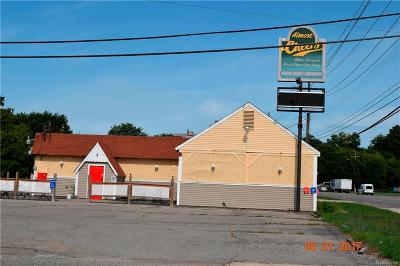 Oakland County Commercial For Sale: 2661 Dixie Highway
