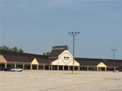 Monroe Twp MI Commercial Lease For Lease: $799