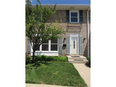 Belleville, Belleville-vanbure, Van Buren, Van Buren Twp Condo/Townhouse For Sale: 13361 Lake Point Boulevard