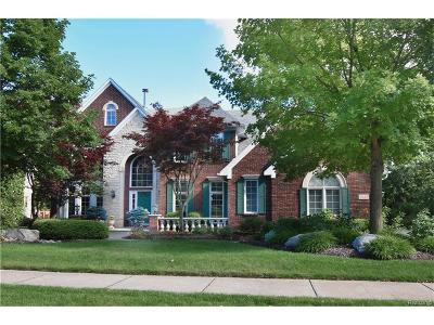 Rochester Hills Single Family Home For Sale: 3638 Nesting Ridge Drive