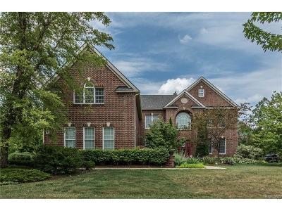 Novi Single Family Home For Sale: 25704 Shoreline