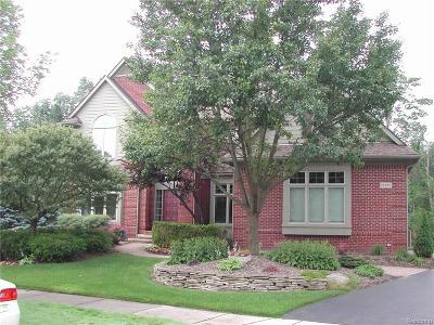 Novi Single Family Home For Sale: 30362 Balfour Drive