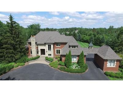 Springfield Twp MI Single Family Home For Sale: $949,000
