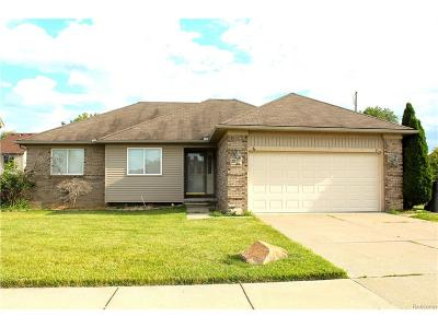 Clinton Twp MI Single Family Home For Sale: $159,900