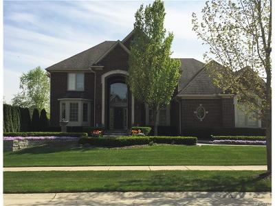 Rochester Hills Single Family Home For Sale: 856 Majestic