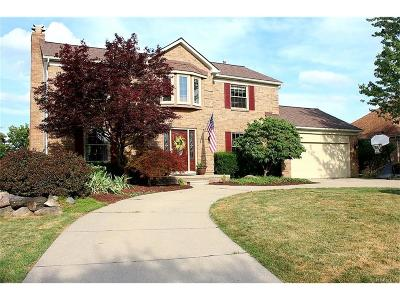 Northville Single Family Home For Sale: 17858 Farmcrest Court