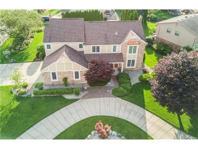 Northville Single Family Home For Sale: 41003 Stone Haven Road