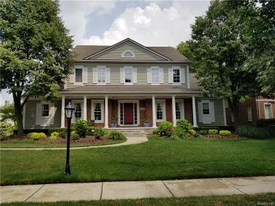 Novi Single Family Home For Sale: 22798 Summer Lane