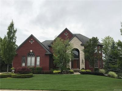 Rochester Hills Single Family Home For Sale: 1364 Tranquility Court