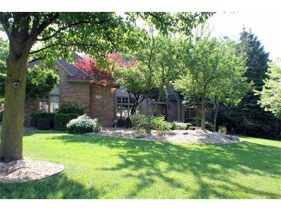 Rochester Single Family Home For Sale: 1818 Westridge Drive