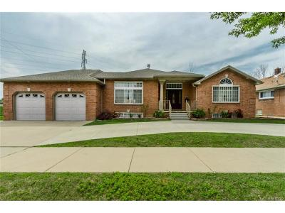 Dearborn Single Family Home For Sale: 7247 Ternes Street