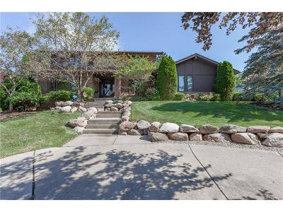 West Bloomfield, West Bloomfield Twp Single Family Home For Sale: 3230 Shadydale Court