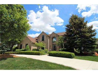 Northville Single Family Home For Sale: 40571 Coachwood Circle