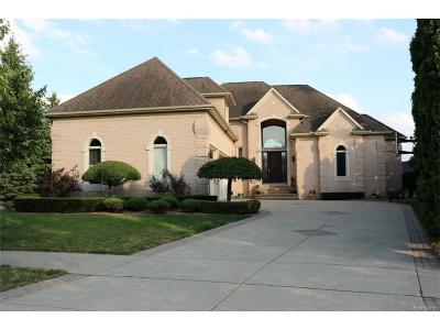 Macomb County Single Family Home For Sale: 57538 Windham Court