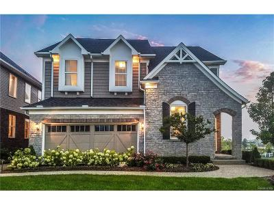 Northville Single Family Home For Sale: 18729 Cumberland Court