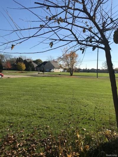 Sterling Heights Residential Lots & Land For Sale: 39368 Ryan Road