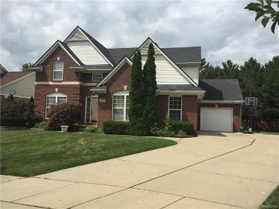 Sterling Heights Single Family Home For Sale: 4655 Saint Albans Drive