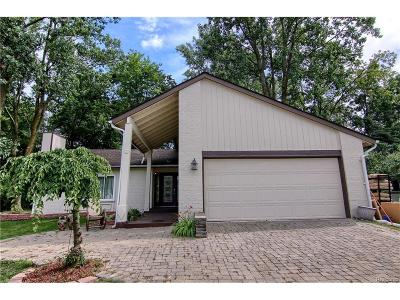 West Bloomfield, West Bloomfield Twp Single Family Home For Sale: 5167 Patrick Road