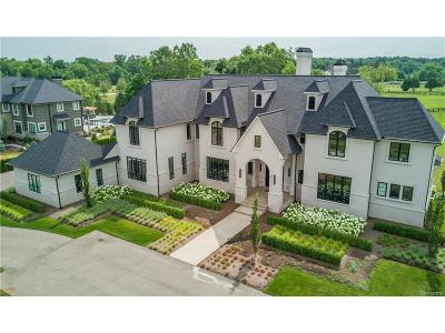 Bloomfield Hills Single Family Home For Sale: 540 Chase Lane