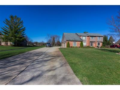 Novi Single Family Home For Sale: 25229 Birchwoods Dr Drive