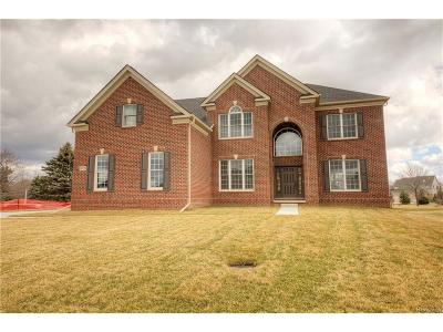 Novi Single Family Home For Sale: 24798 Acorn Trail