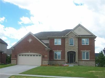Novi Single Family Home For Sale: 27590 Estrada Lane