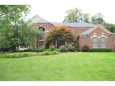 Northville Single Family Home For Sale: 45133 Oak Forest Drive