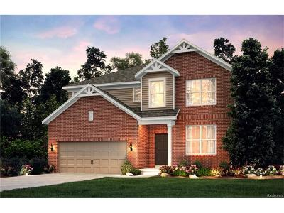 Novi Single Family Home For Sale: 48255 Isabella Way Court