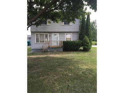 Van Buren, Van Buren Twp Single Family Home For Sale: 41547 Van Born Road