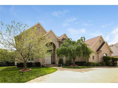 West Bloomfield, West Bloomfield Twp Single Family Home For Sale: 4939 Peggy