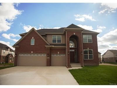 Canton Single Family Home For Sale: 50256 Maywood Drive
