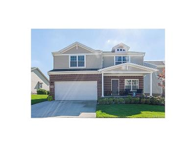 Lyon Twp Single Family Home For Sale: 59671 Twin Pines Drive