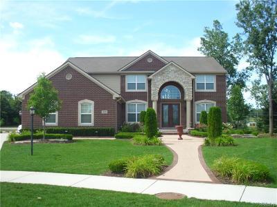 Rochester Single Family Home For Sale: 966 Monterey Lane