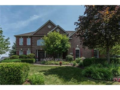 Northville Single Family Home For Sale: 15826 Spyglass Drive