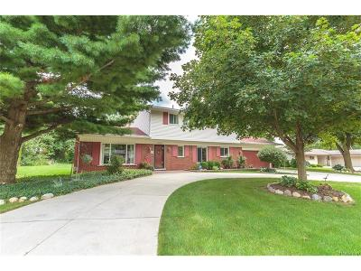 Bloomfield Twp Single Family Home For Sale: 6753 Cathedral Drive