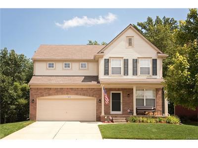 Lyon Twp Single Family Home For Sale: 28518 Cottage Lane