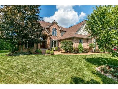 Plymouth Single Family Home For Sale: 46522 Southview Lane