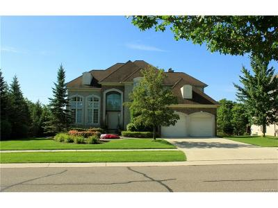 Novi Single Family Home For Sale: 24315 Cavendish Ave W Avenue E