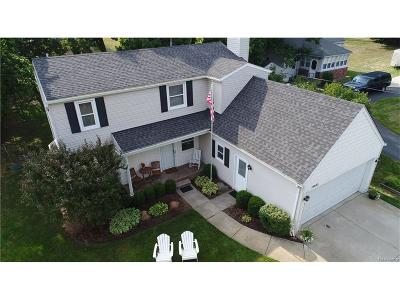 Northville Single Family Home For Sale: 19625 Clement Road