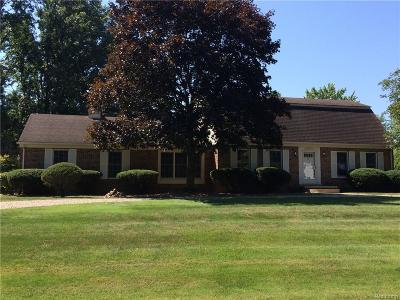 Northville Single Family Home For Sale: 46975 Curtis Road