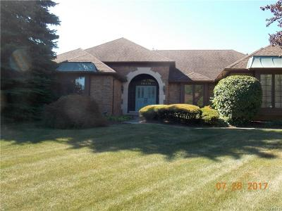 Farmington Hills Single Family Home For Sale: 38215 Lana Drive