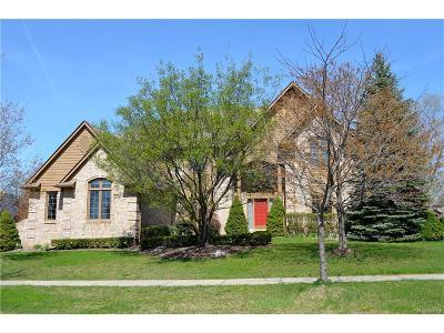 Novi Single Family Home For Sale: 47240 Northumberland Street